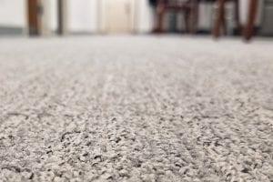 carpet floor hallway room
